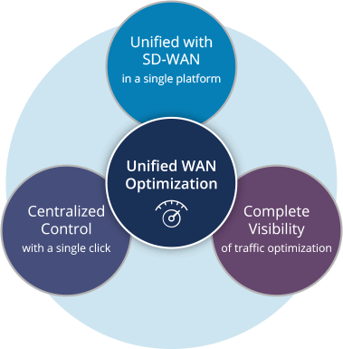 Unified WAN Optimization