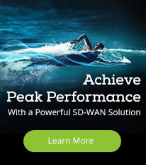 SD-WAN Peak Performance